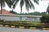 Palm Spring Resort