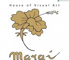 Margi Visual Art Photos