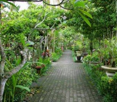Taman Harum Cottages Bali Photos