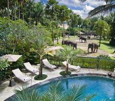 Elephant Safari Park Lodge Bali Photos
