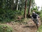 Taman Wisata Bukit Melingkuh Photos