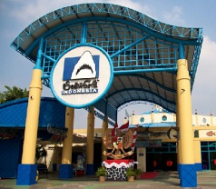 Sea World Indonesia Photos