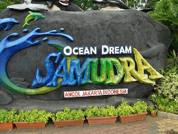 Ocean Dream Samudra