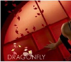 Dragonfly Photos