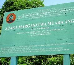Suaka Margasatwa Muara Angke Photos
