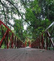 Kebun Raya Bogor Photos