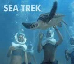 Sea Trek Photos