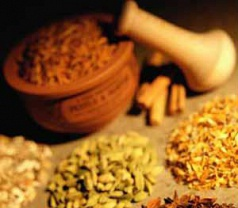 Duta Herbal  Photos