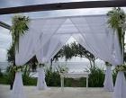 Heliconia Bali Photos