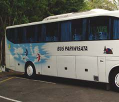 Bali Bus Rental Photos