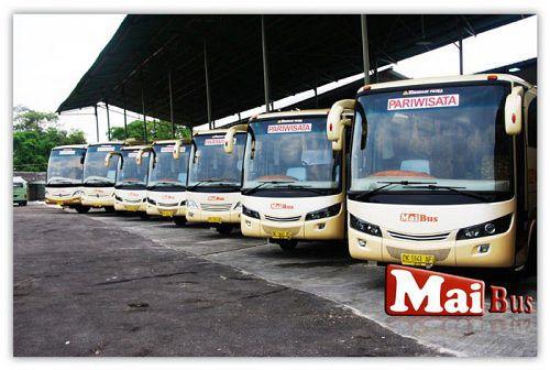 mai bus