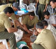 Asosiasi Pengelola Pestisida Bali Photos