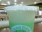 Canedew Photos