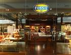 Fossil Photos