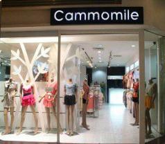 Cammomile Photos