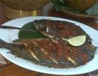 Ikan Bali Jimbaran Photos