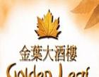 Golden Leaf Photos